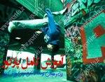 خرید کامل ترین مجموعه آموزش پارکور در ایران
