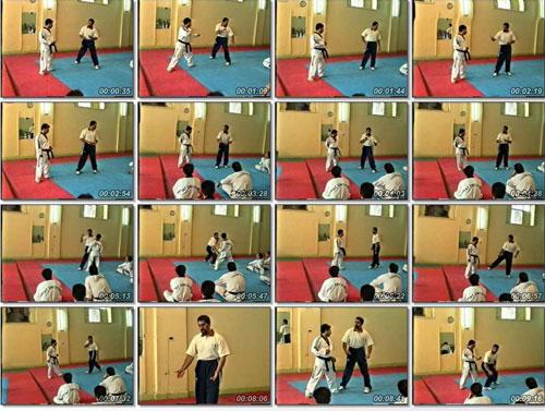 آموزش مبارزه تکواندو توسط مربی ایرانی