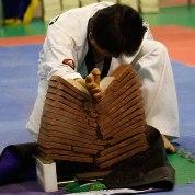 مسابقات جهاني تكواندو هان مادانگ  2011